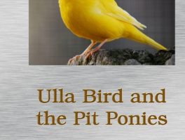 Read some of Ulla Bird and the Pit Ponies, here