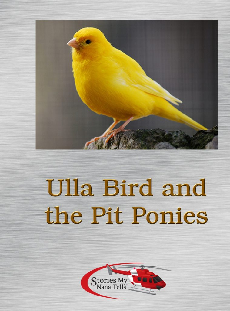 Ulla Bird and the Pit Ponies is not about butterflies
