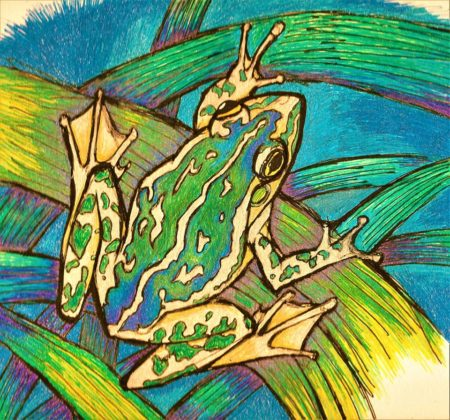 Grrk The Motorbike Frog has many friends