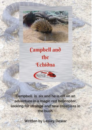 Campbell and the Echidna is a story for boy in the FIFO industry