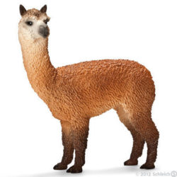 This male Alpaca has been added to Nana's Zoo
