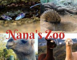my zoo facebook