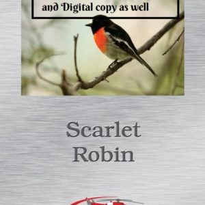 Scarlet Robin book and digital version