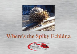 Where's the Spiky Echidna?