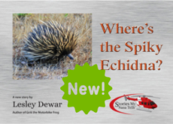 Where's the Spiky Echidna is new. Order now and it's delivered by Australia Post, right to your door.