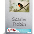 Free-standing-Scarlet-Robin-3D
