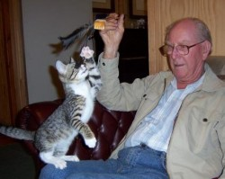 The kitten and my Dad, playing
